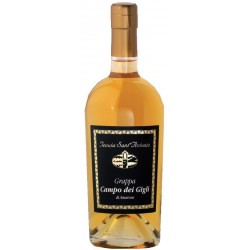 Grappa Amarone C.dei Gigli Barrique